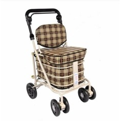 3 in 1 Shopping Trolley